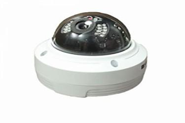 دوربین دام آلتک IP مدل AT-9008